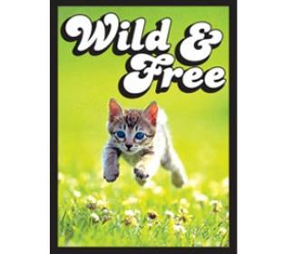 Legion Wild and Free Standard Sized 50 ct Sleeves