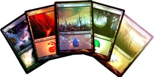 20 Foil Lands MTG 4 of each Type
