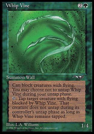 Whip Vine (1)