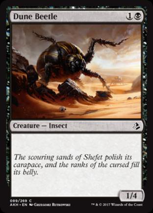 Dune Beetle