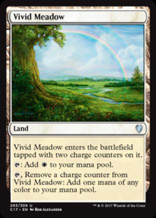 Vivid Meadow