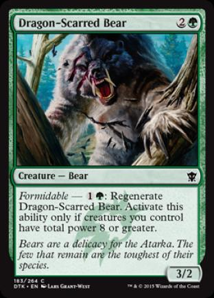 Dragon-Scarred Bear