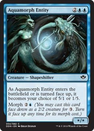 Aquamorph Entity