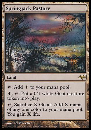 Springjack Pasture