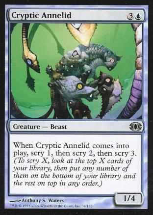 Cryptic Annelid
