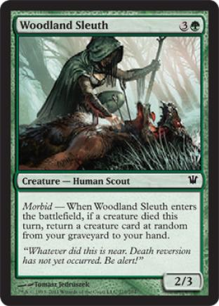 Woodland Sleuth