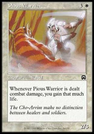 Pious Warrior