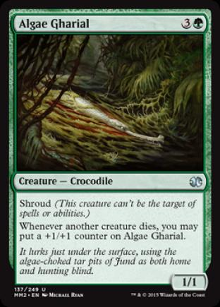 Algae Gharial