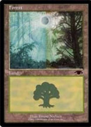 Forest (Guru)
