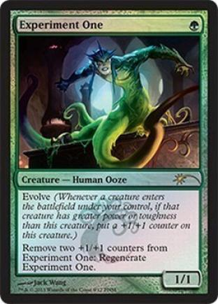 Experiment One (FNM)
