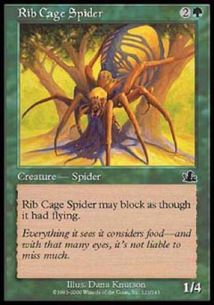 Rib Cage Spider