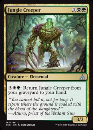 Jungle Creeper