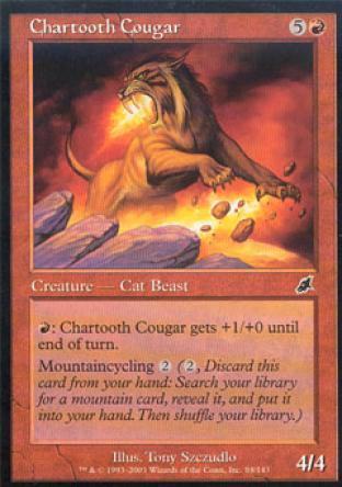 Chartooth Cougar