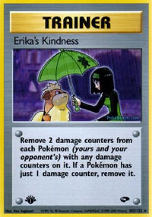 Erika's Kindness