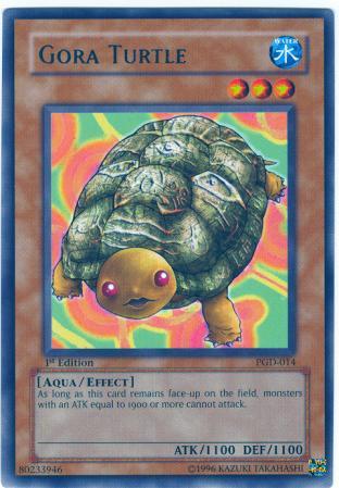 Gora Turtle