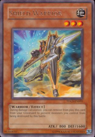 Shield Warrior